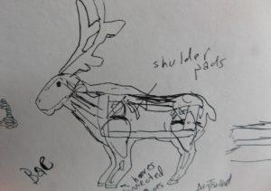 Dan Ballards original sketch of the reindeer -- with legs!